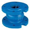 Check valve with axial gate - DN100